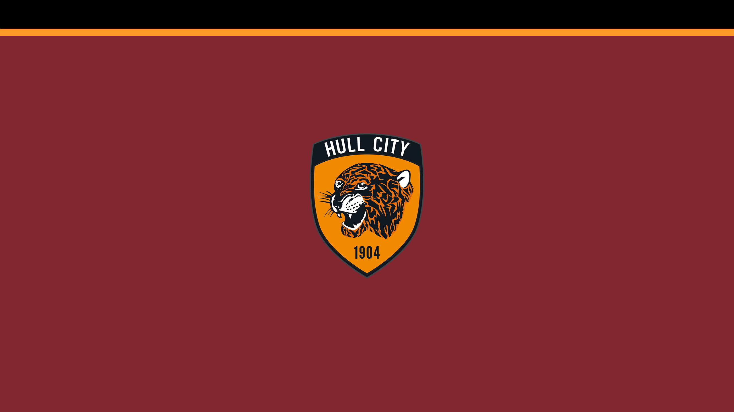 Hull City FC (Third)