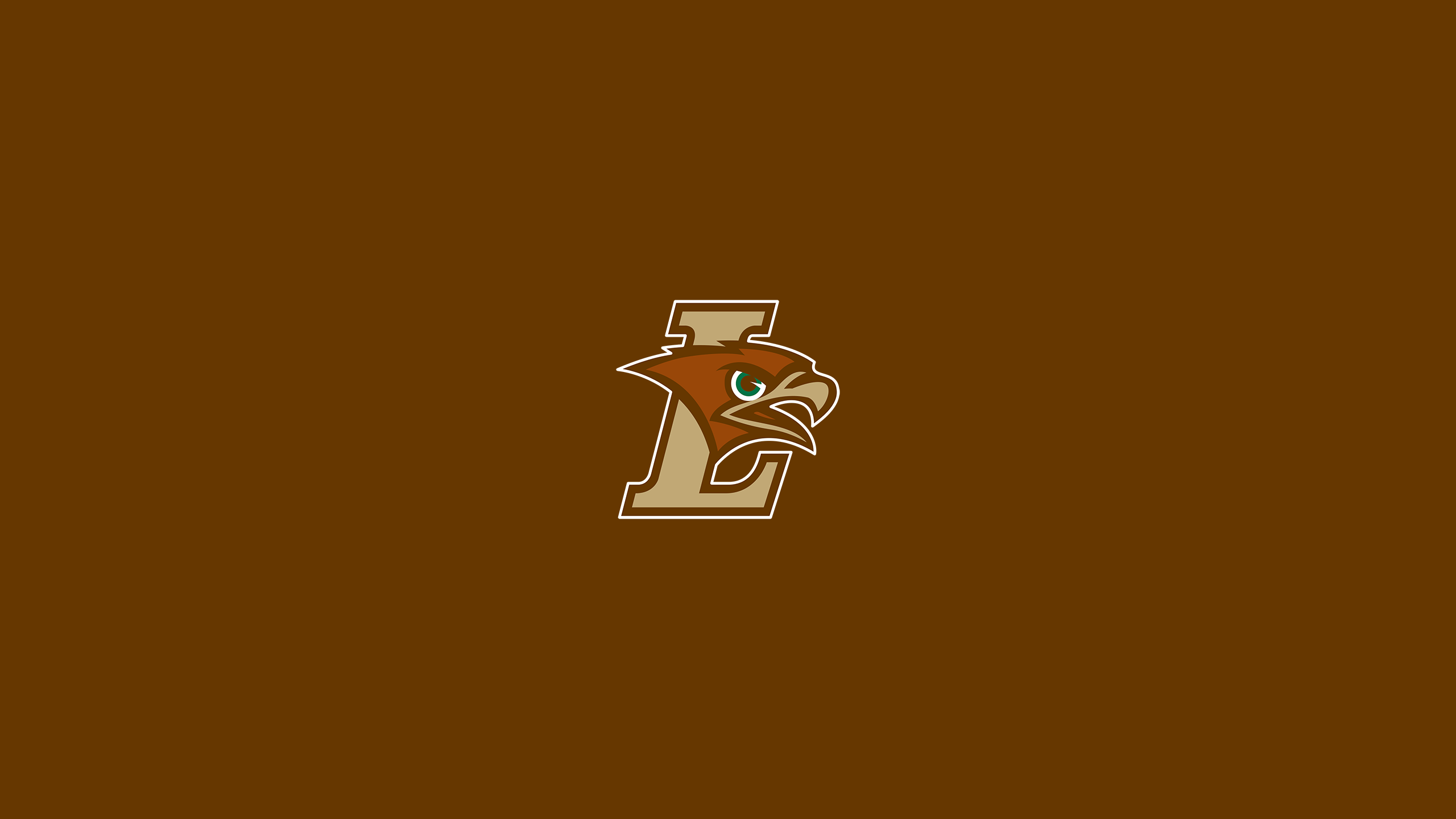 Lehigh University (PA) Mountain Hawks