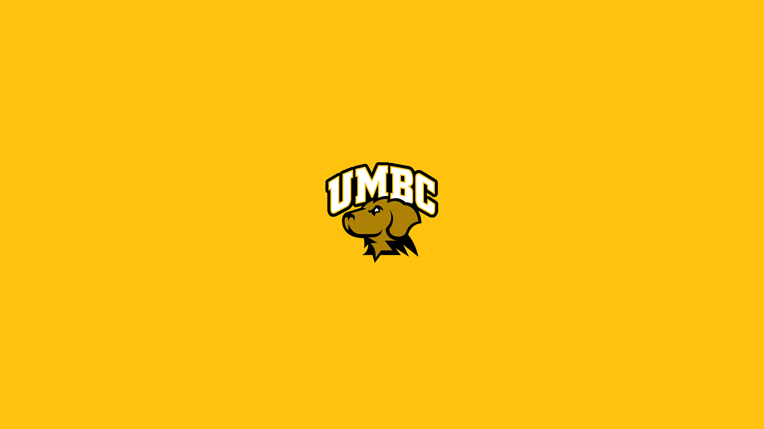 University of Maryland - Baltimore County Retrievers