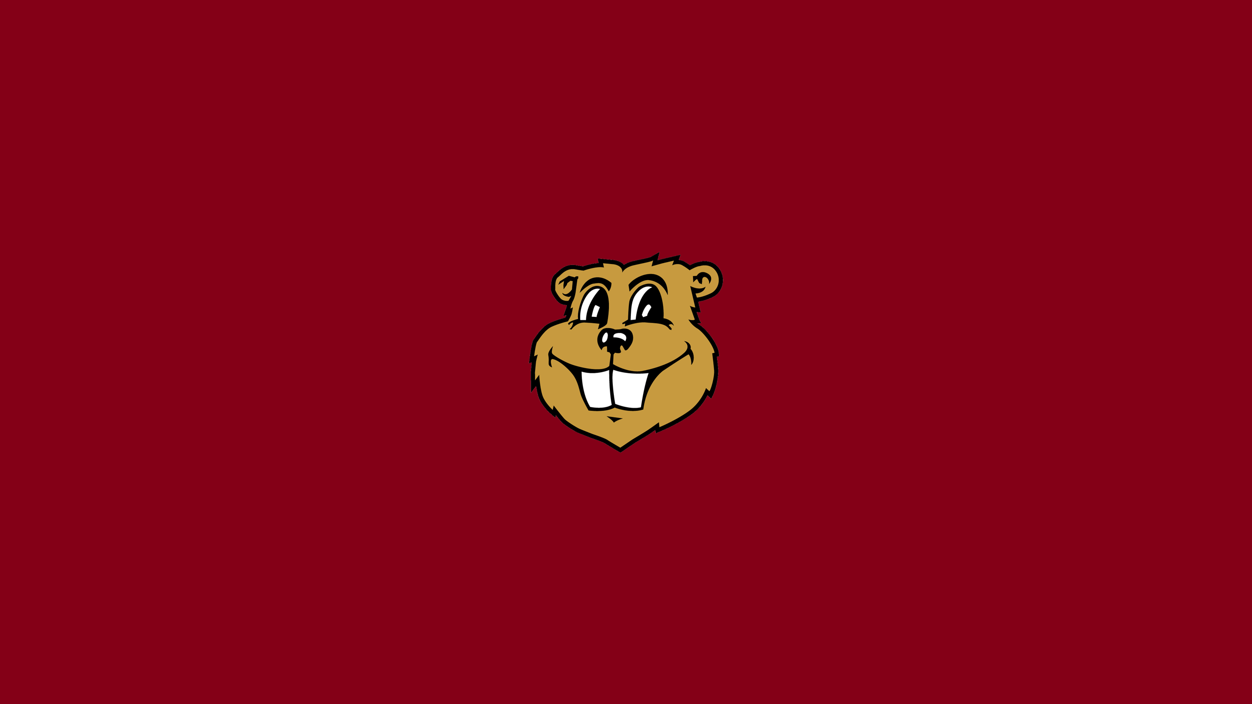 University of MInnesota Golden Gophers