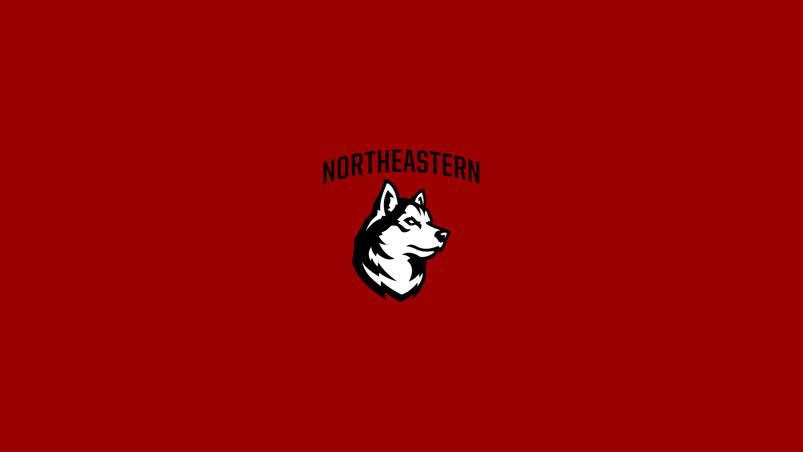 Northeastern University Huskies