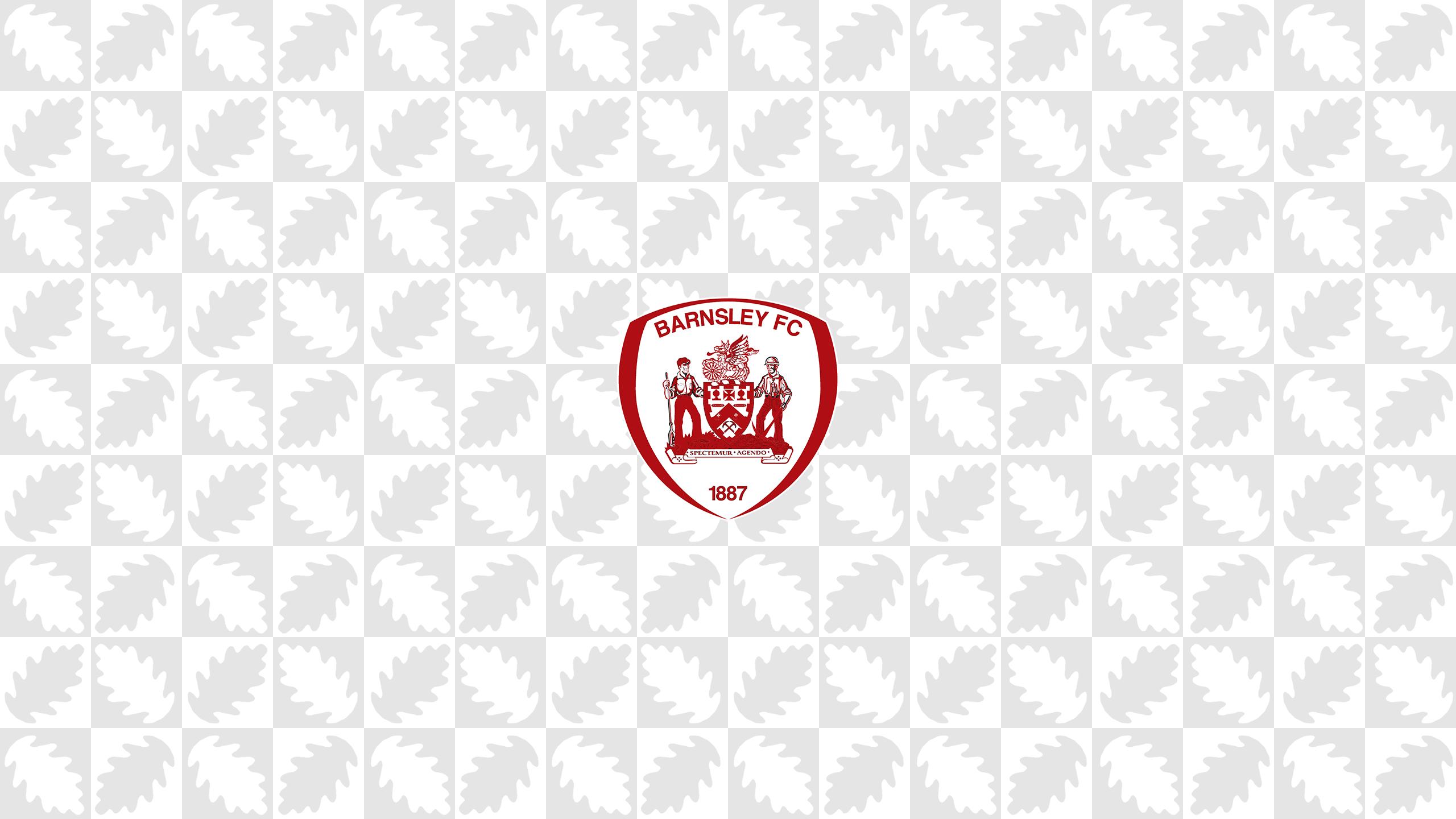 Barnsley FC (Third)