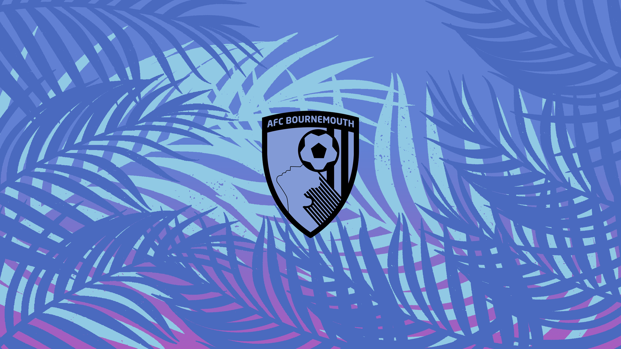 AFC Bournemouth (Away)
