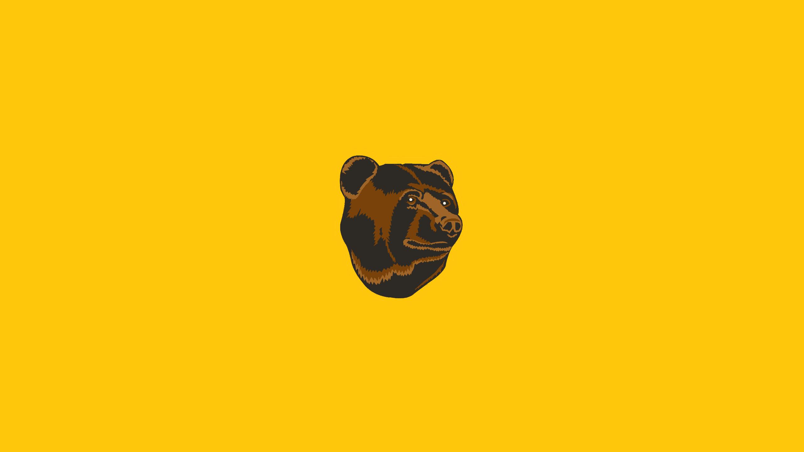 Boston Bruins (Pooh Bear)