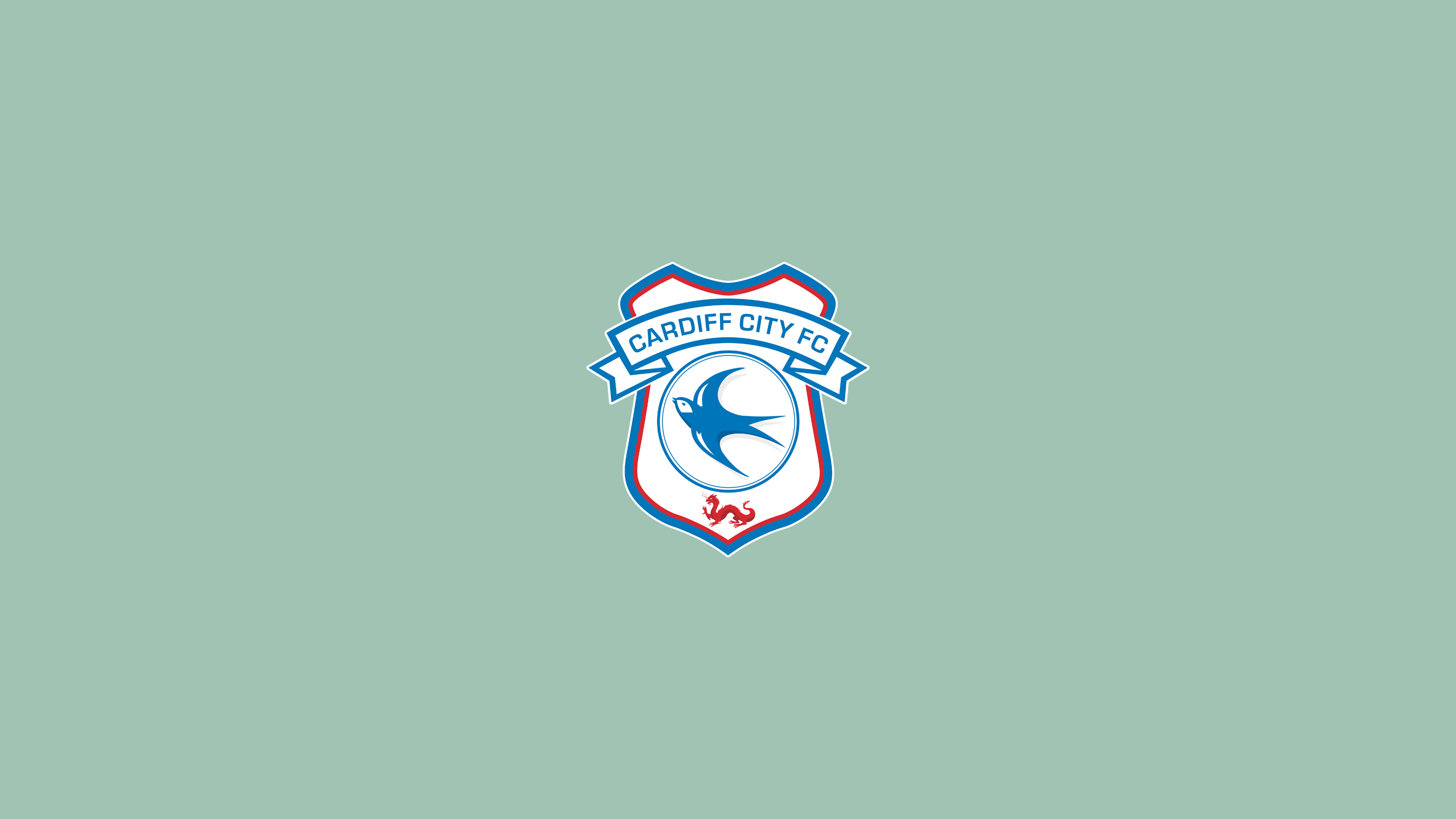Cardiff City FC (Third)