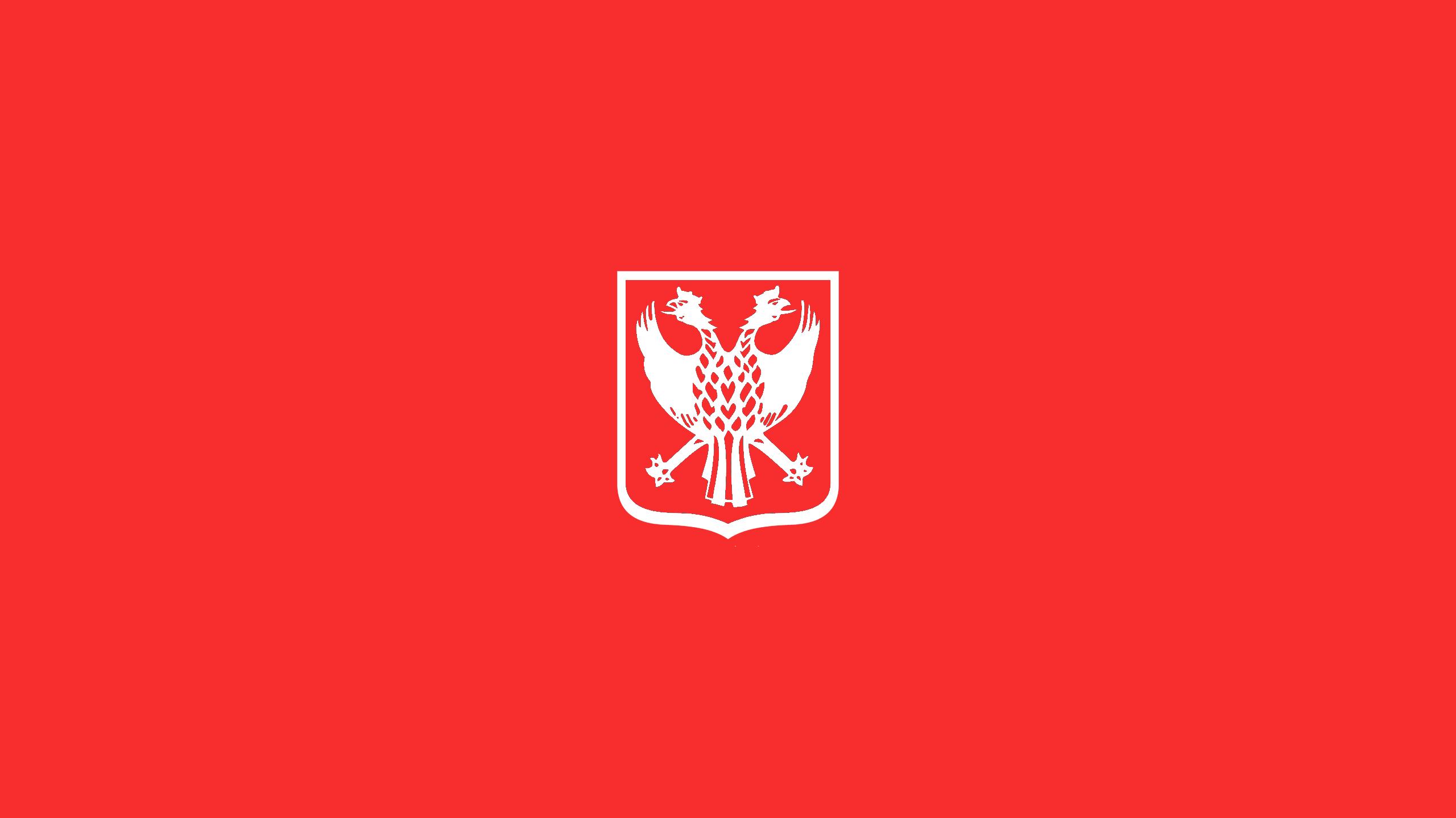 Sint Truidense VV (Third)