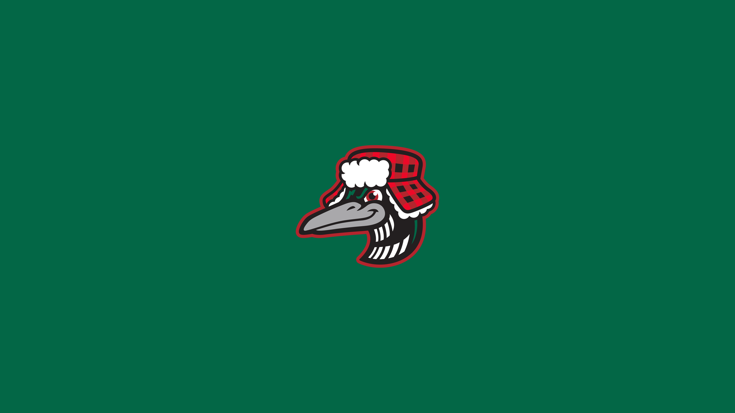 Great Lakes (MI) Loons