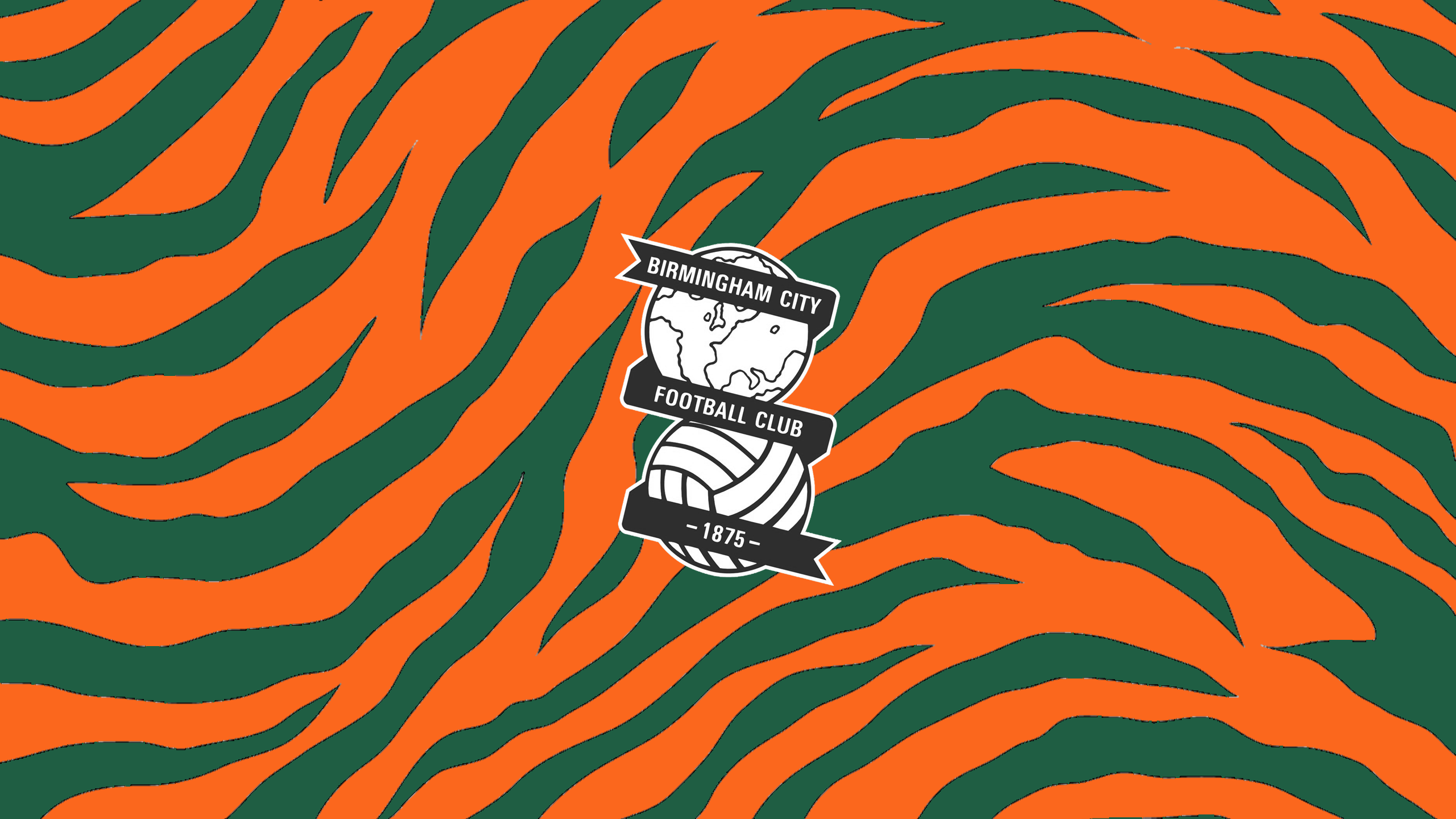Birmingham City FC (Third)