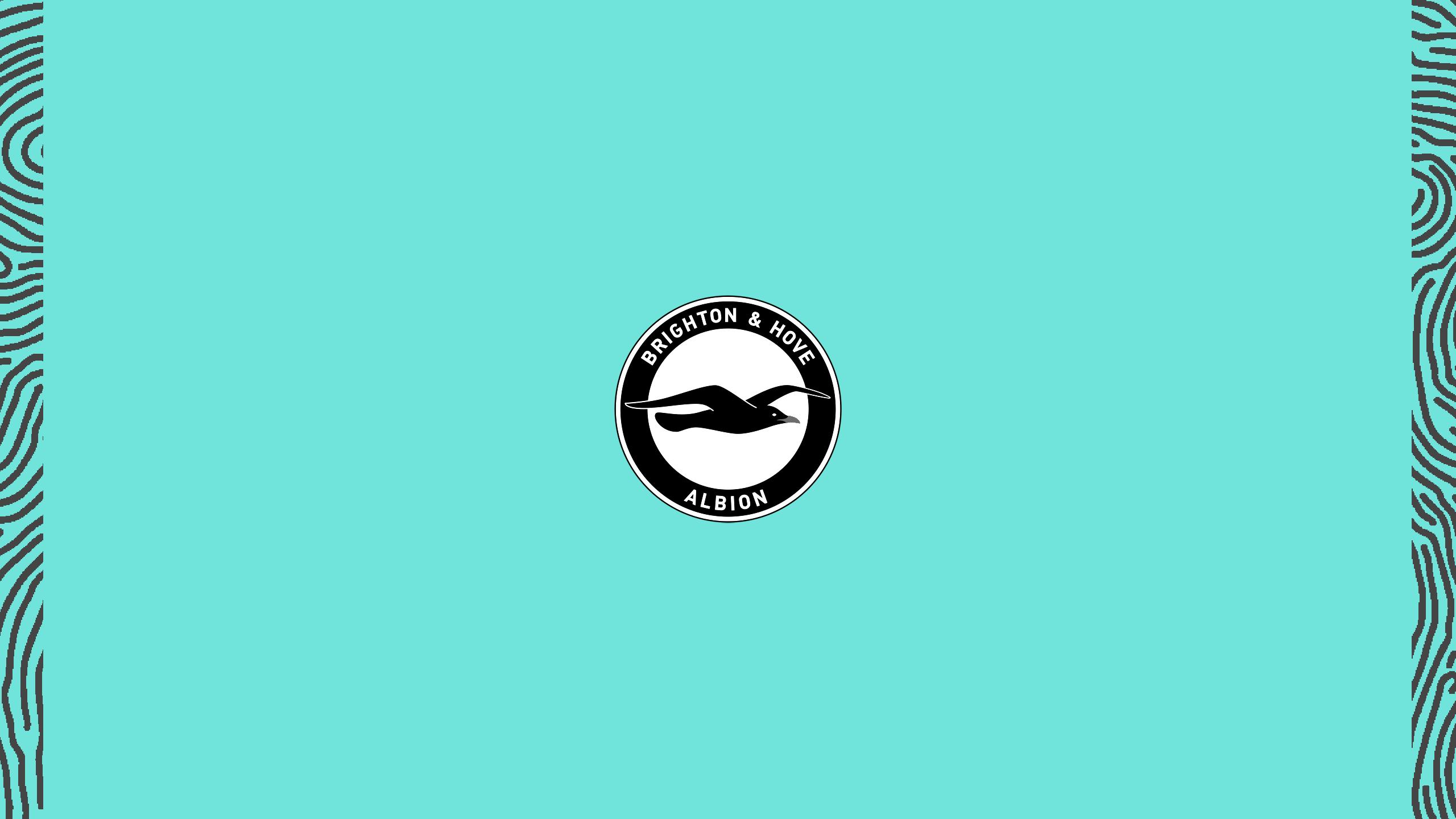 Brighton & Hove Albion FC (Third)