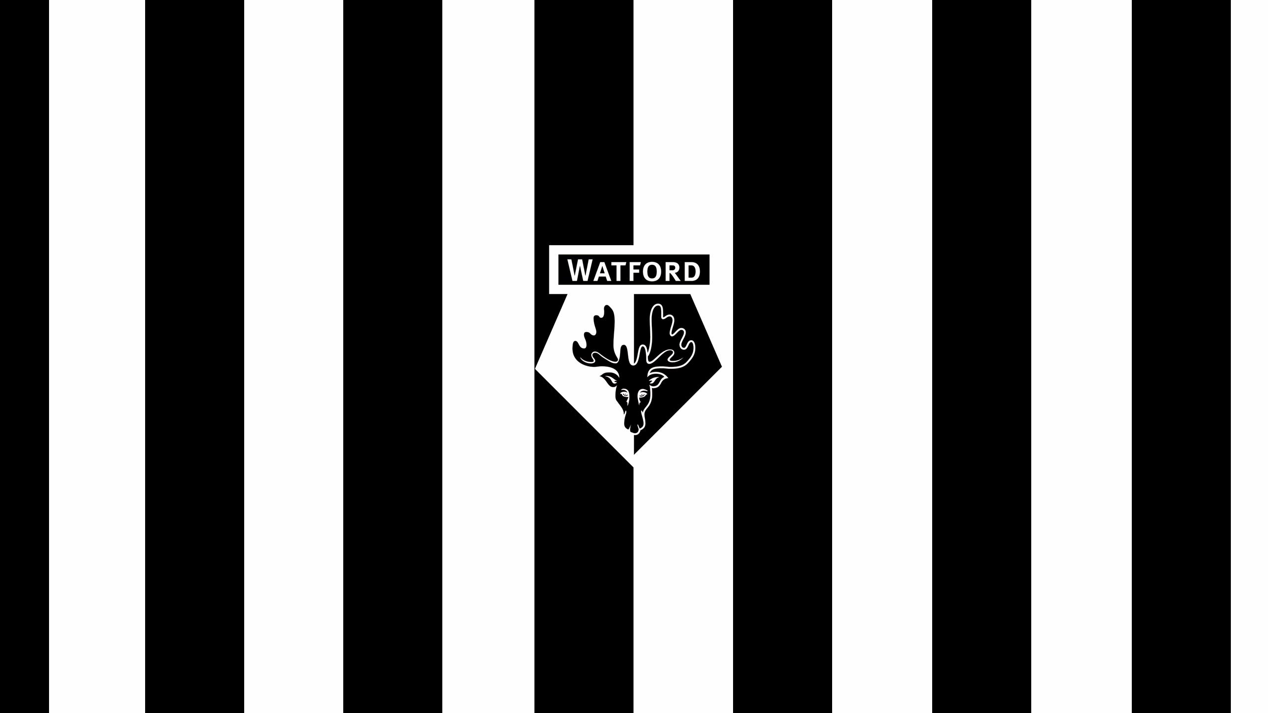 Watford FC (Third)