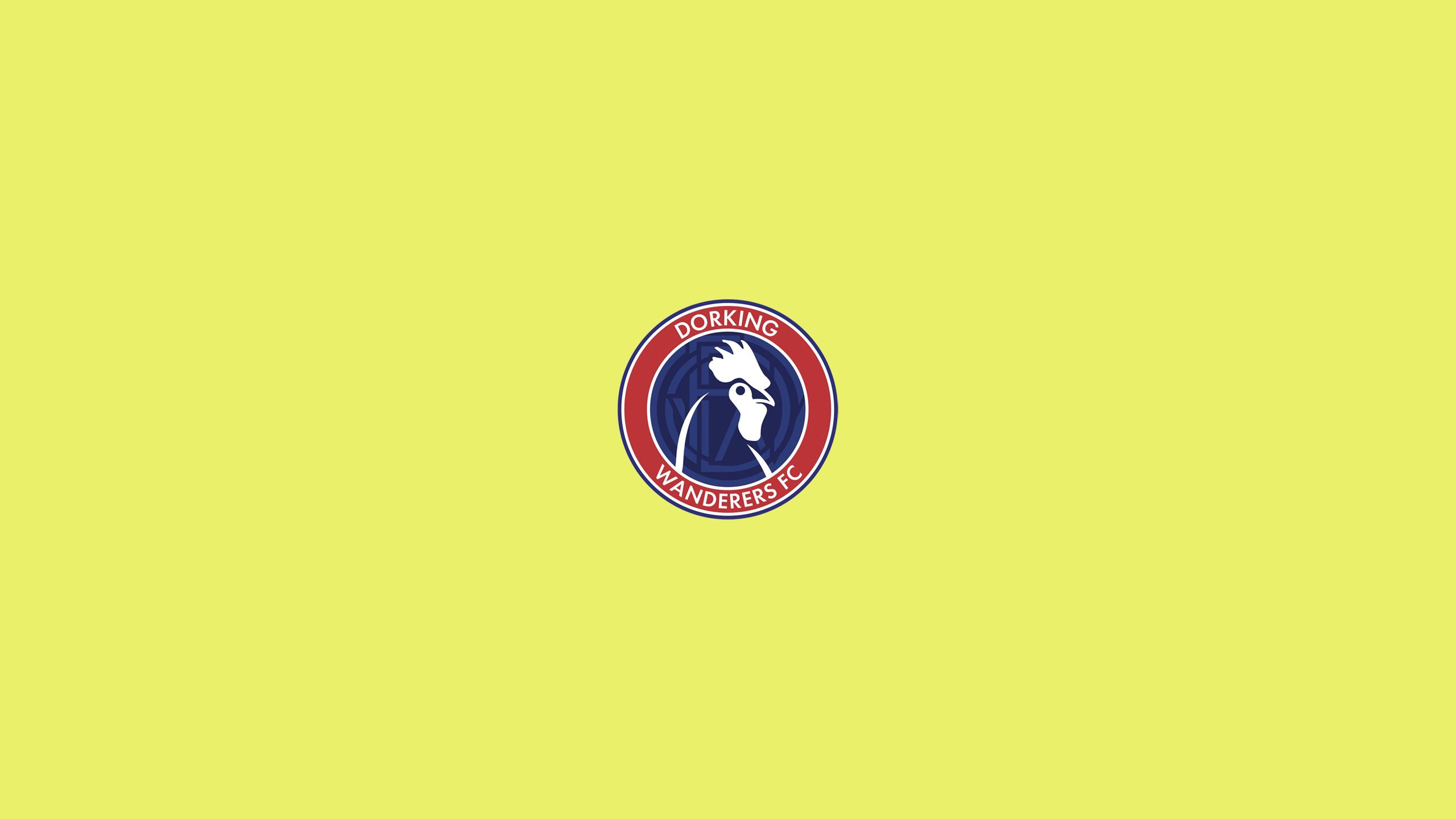 Dorking Wanderers FC (Third)