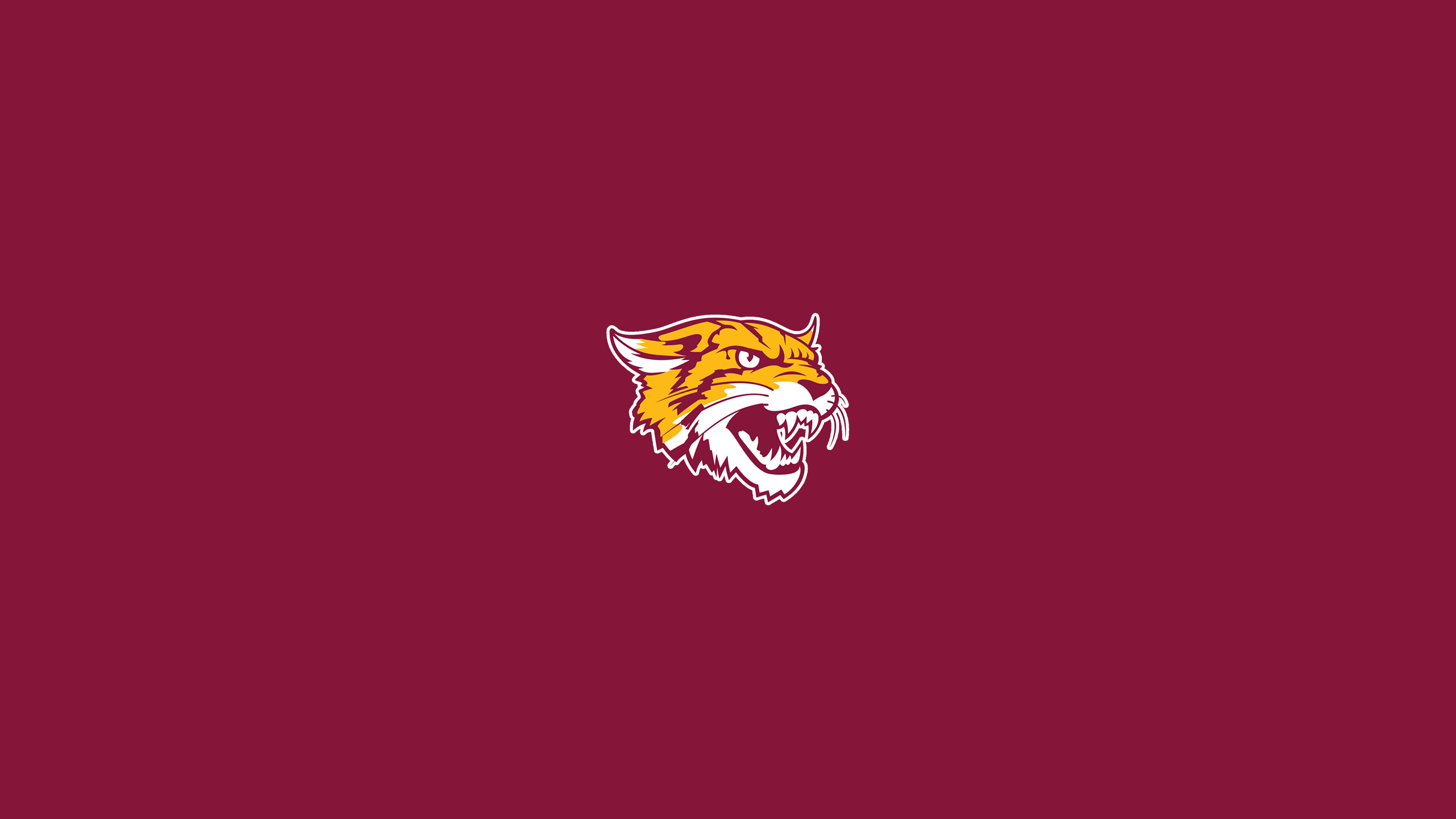 Bethune-Cookman University Wildcats