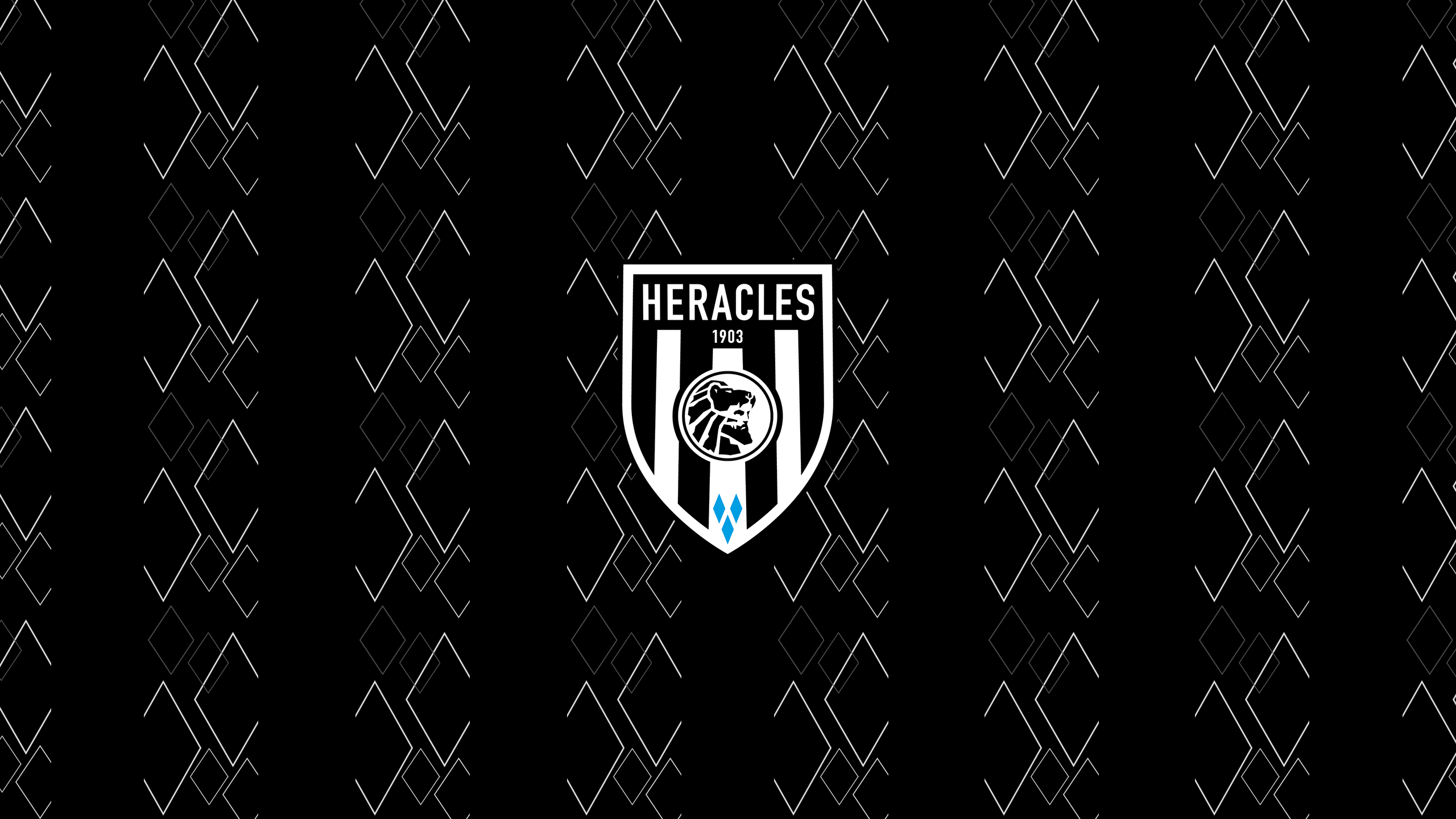 Heracles Almelo SC (Third)