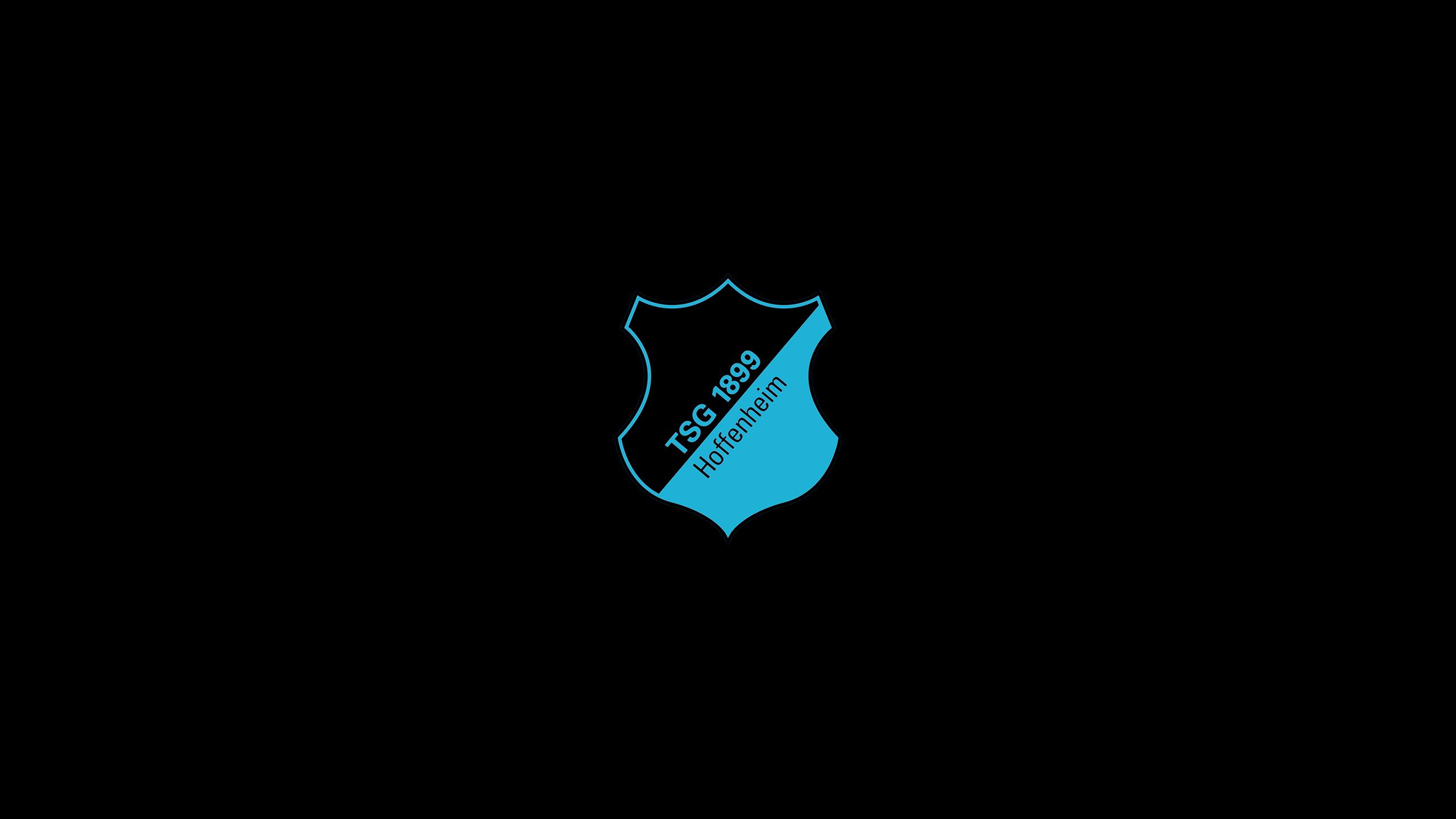 TSG 1899 Hoffenheim (Third)