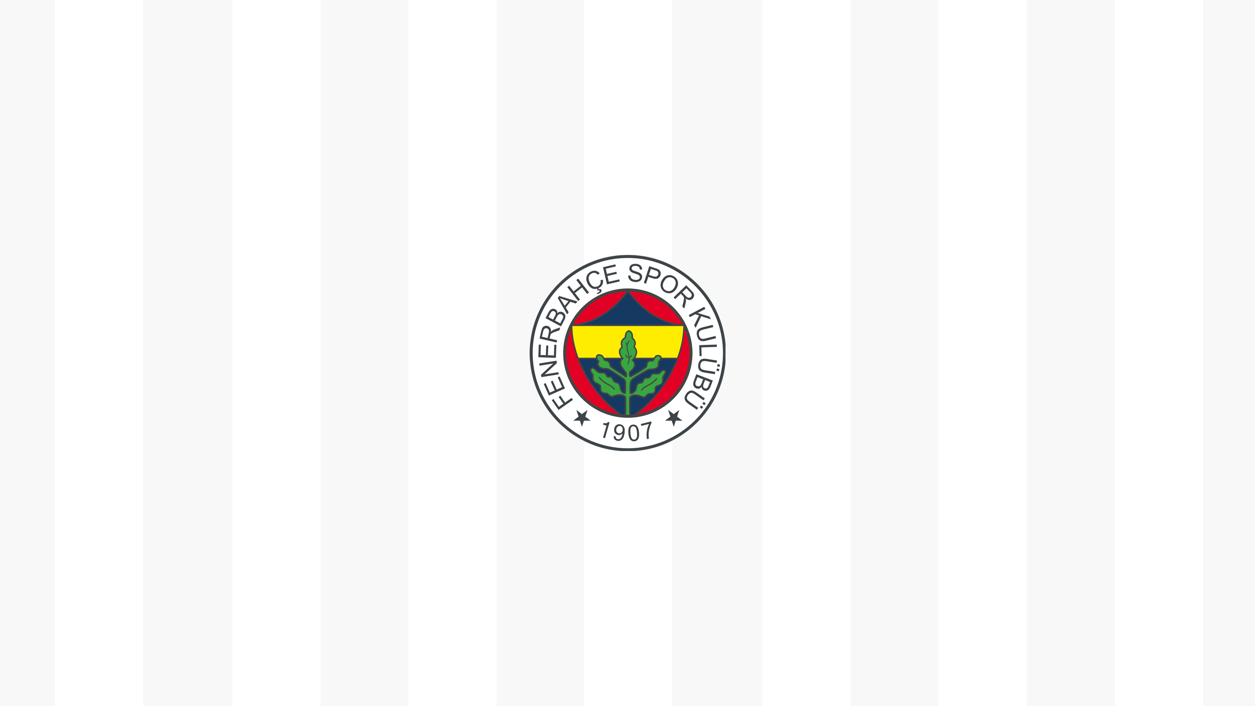 Fenerbahce FC (Away)