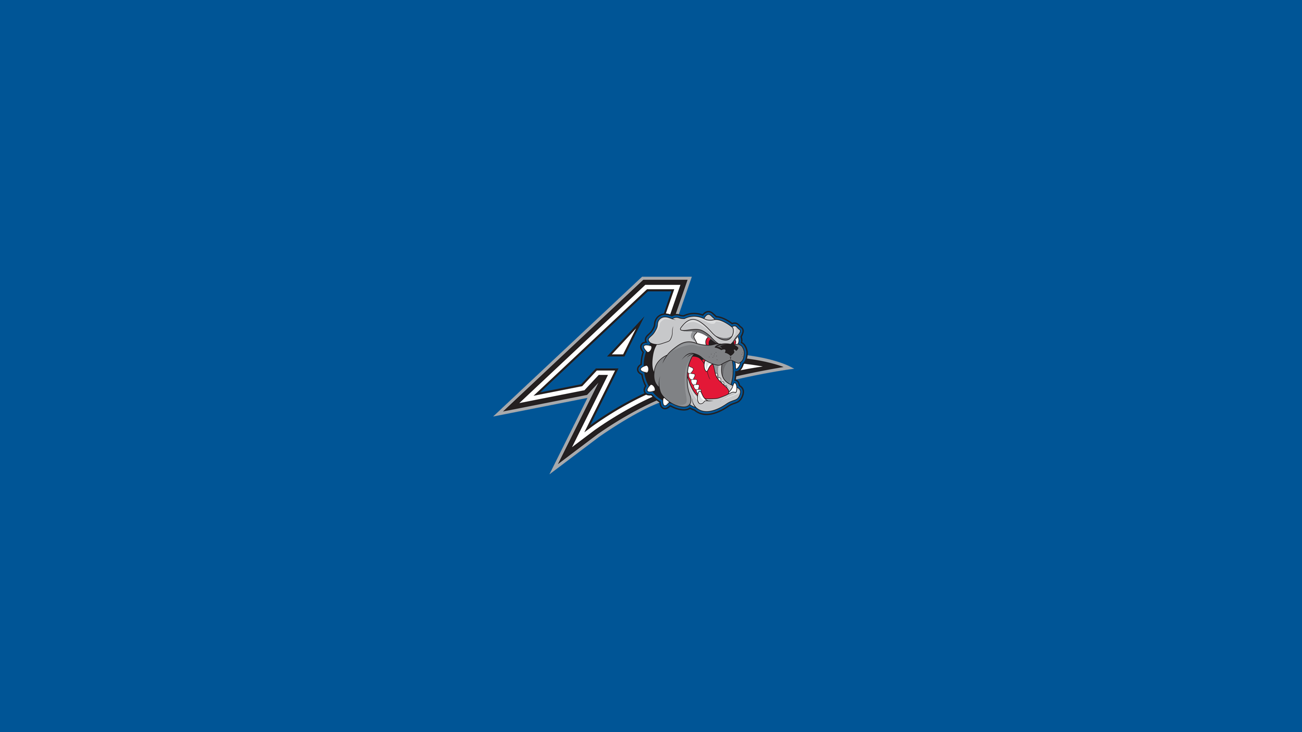 UNC-Asheville Bulldogs