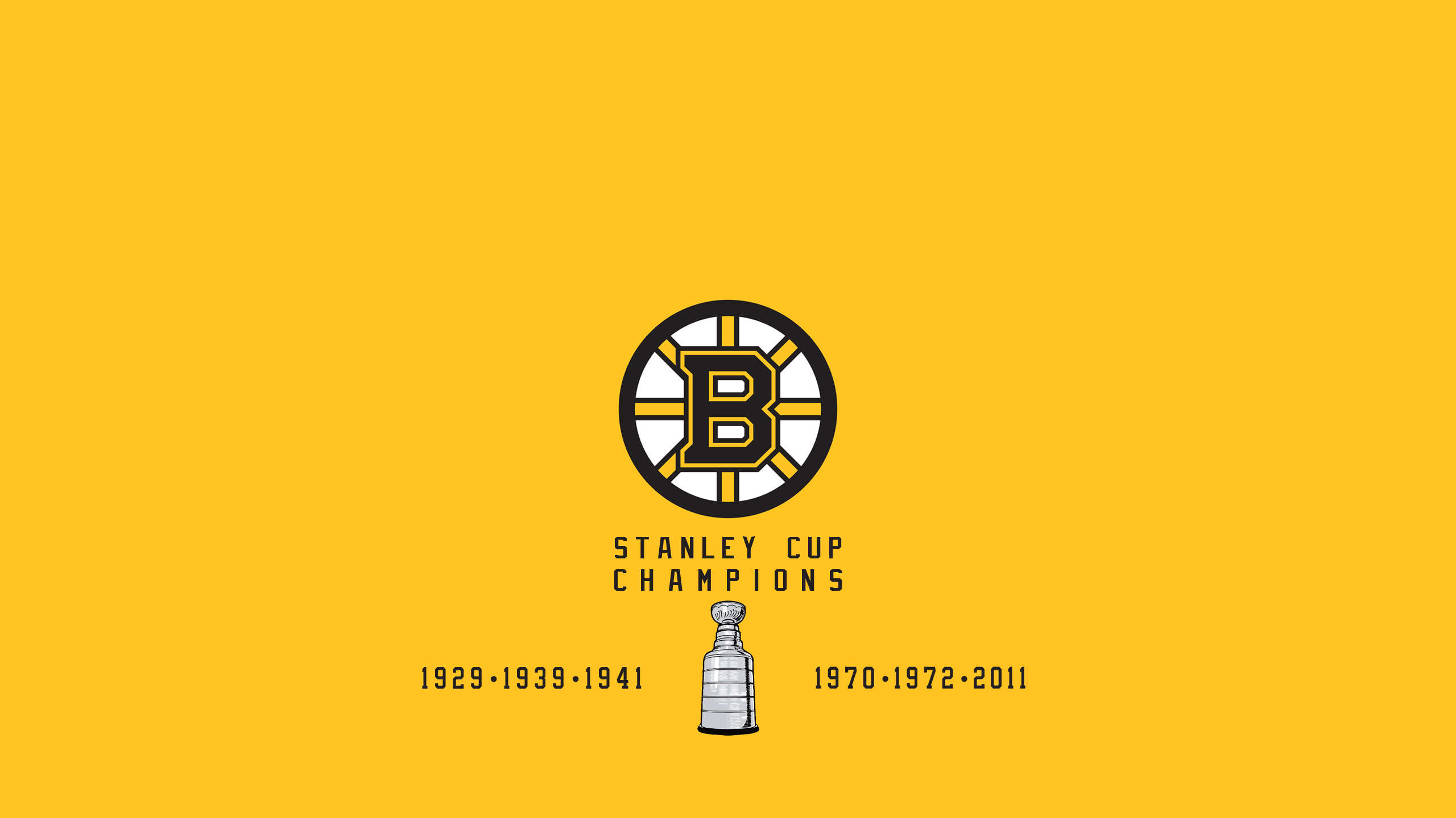 Boston Bruins - Stanley Cup Champs
