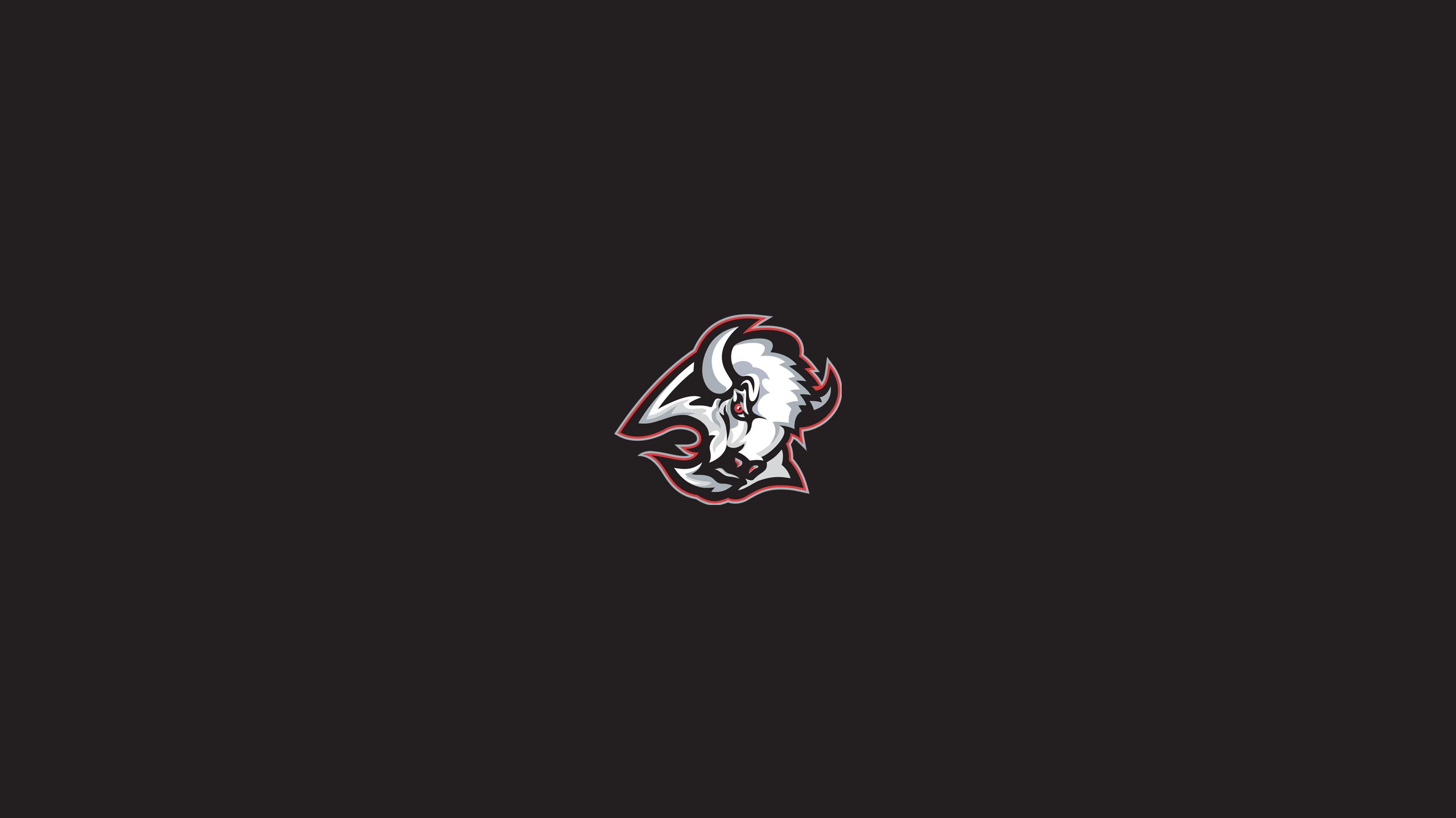 Buffalo Sabres (Hasek Era)