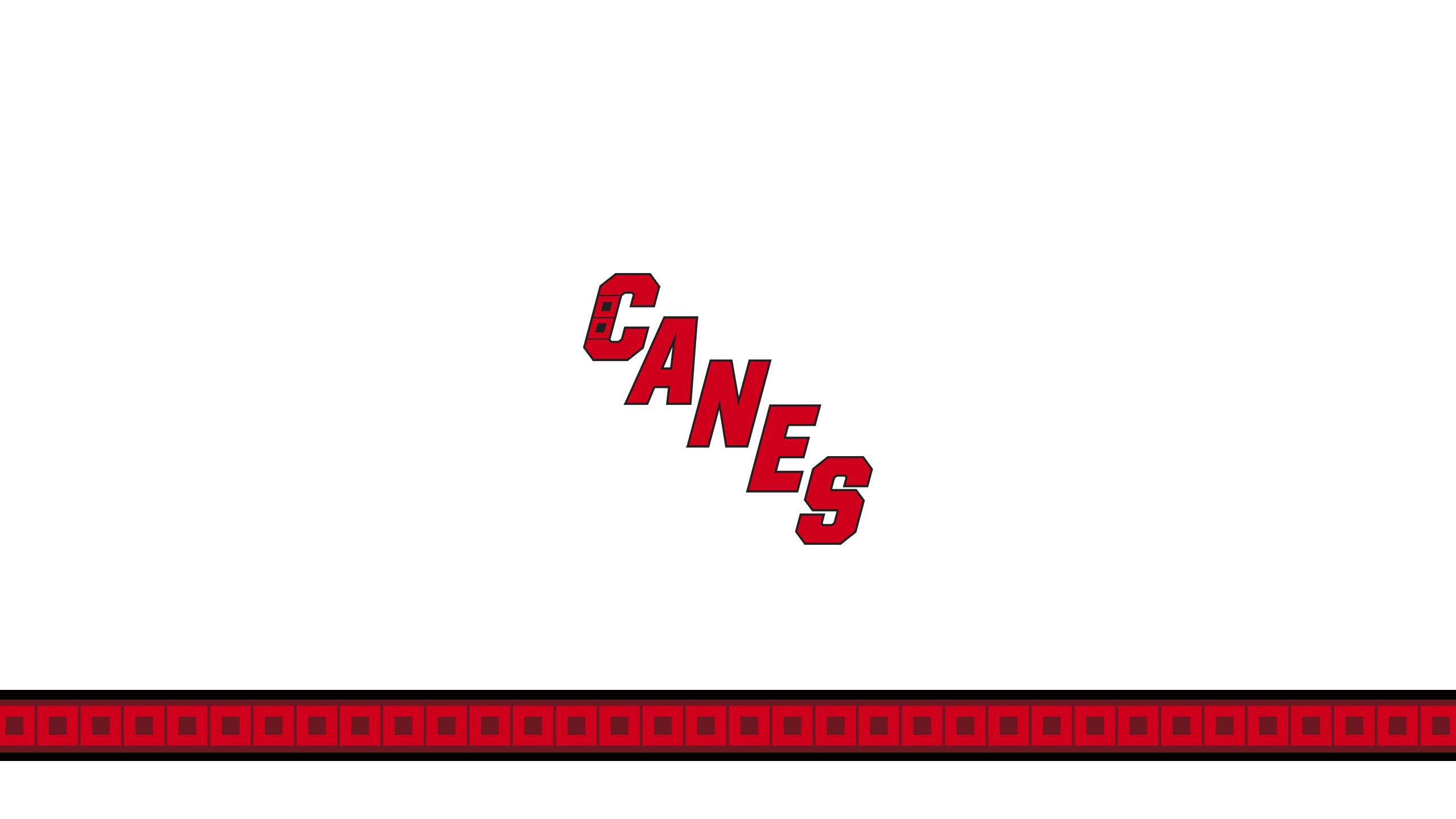 Carolina Hurricanes (Away)
