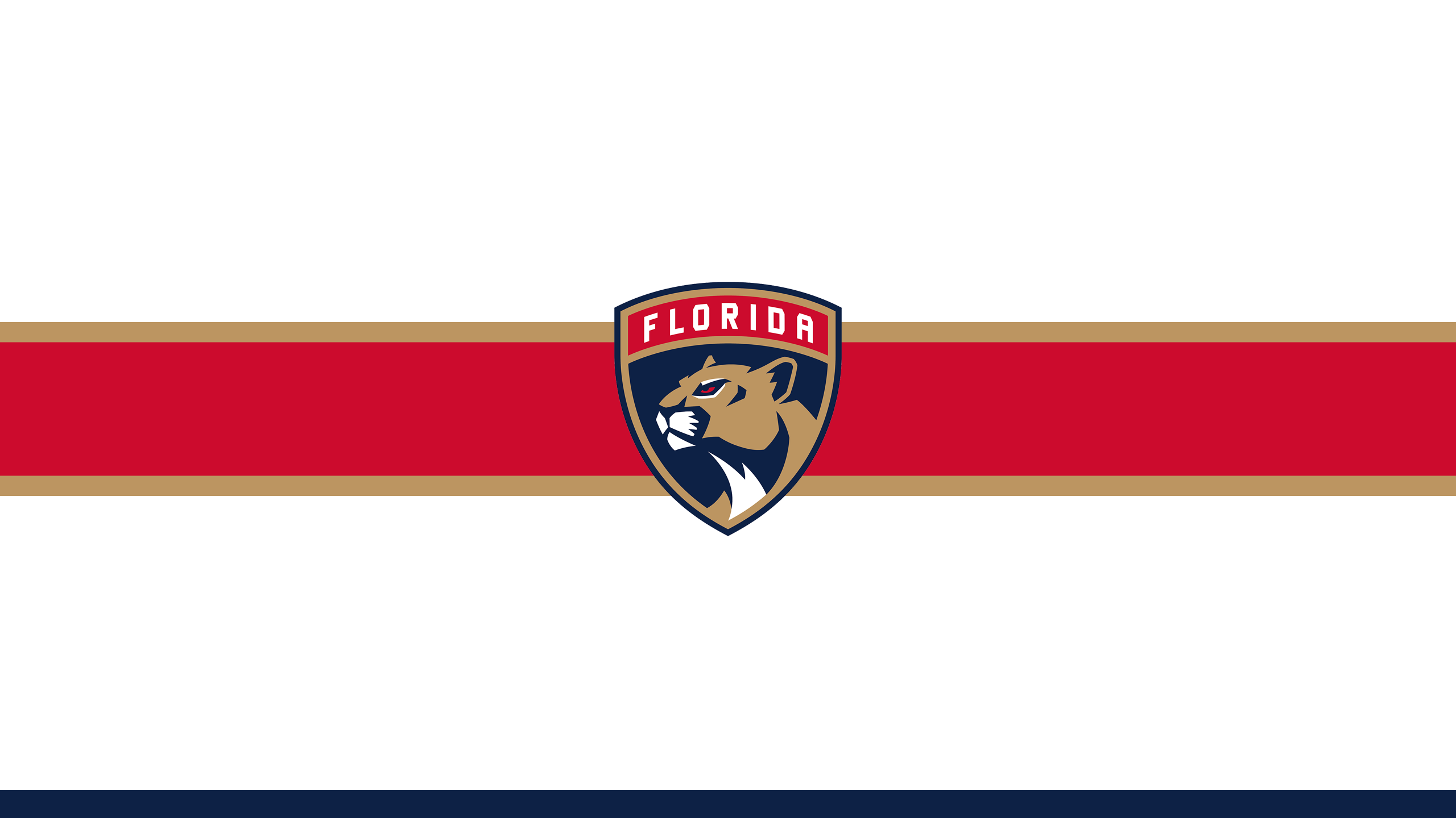 Florida Panthers (Away)